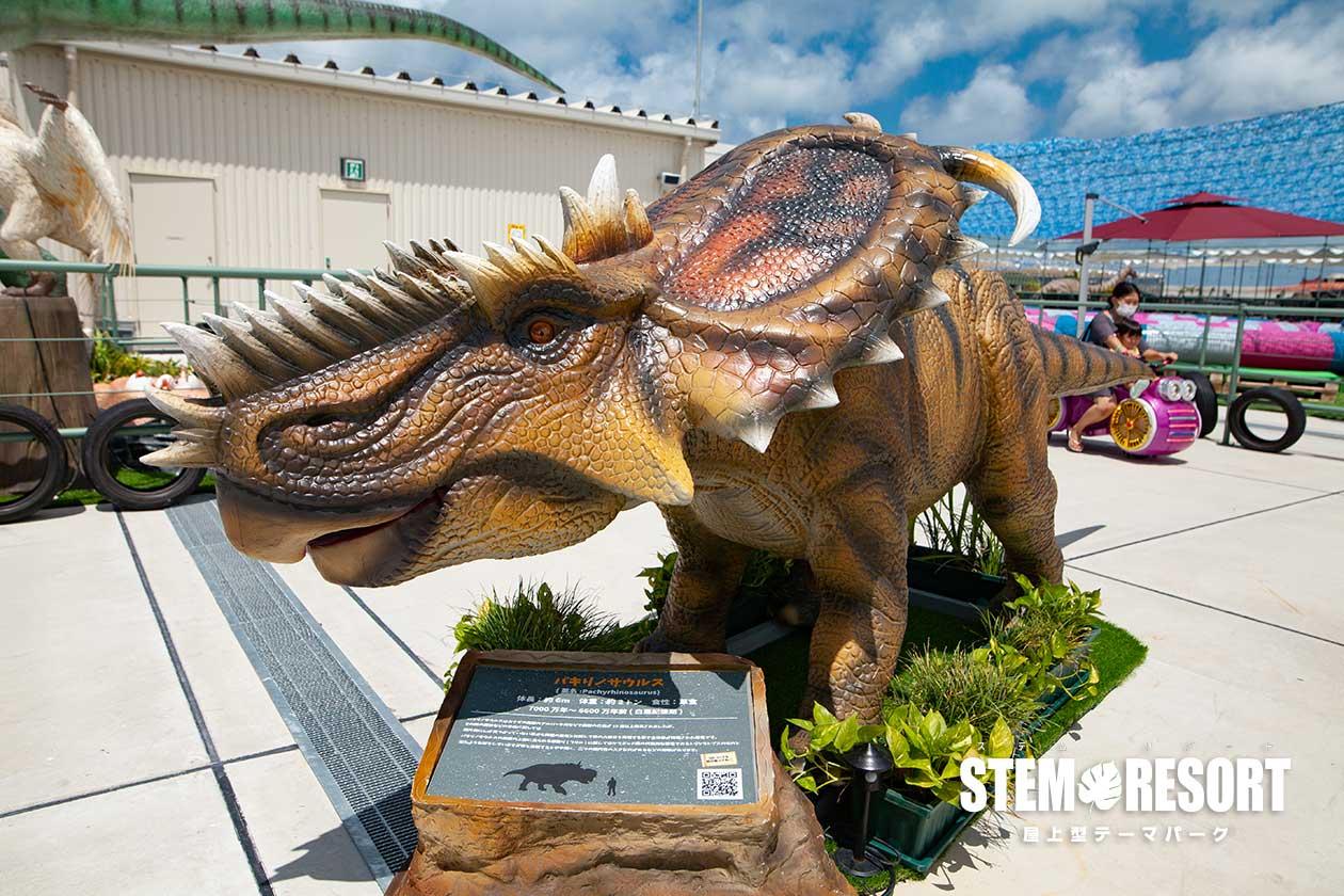 パキリノサウルス|DINOSAUR BBQ & PARK|ステムリゾート沖縄 恐竜図鑑