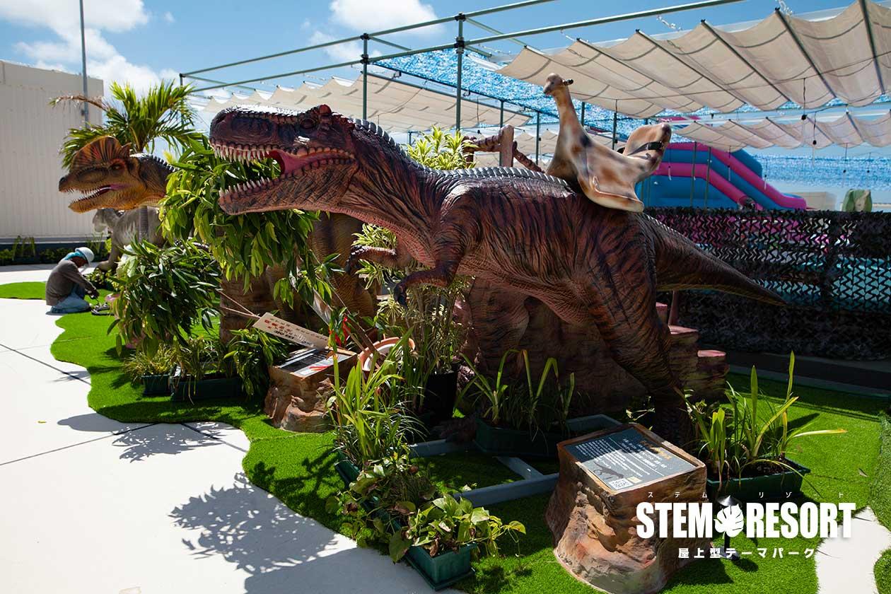ティラノサウルス003|ステムリゾート STEM-RESORT 沖縄豊崎 恐竜図鑑
