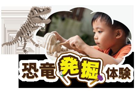 体験プログラム 恐竜発掘体験|ステムリゾート STEM-RESORT 沖縄豊崎