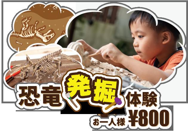 恐竜 発掘 体験プログラム|ステムリゾート STEM-RESORT 沖縄豊崎