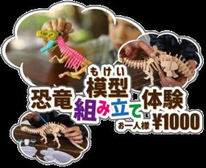 恐竜模型(もけい)組み立て体験プログラム|STEM RESORTステムリゾート 沖縄
