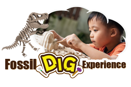 体験プログラム 恐竜発掘体験|DINOSAUR BBQ & PARK|ステムリゾート沖縄
