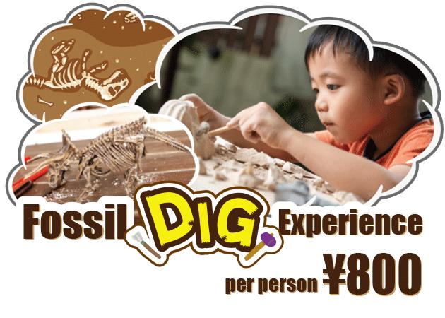 恐竜 発掘 体験プログラム DINOSAUR BBQ & PARK 沖縄 ステムリゾート