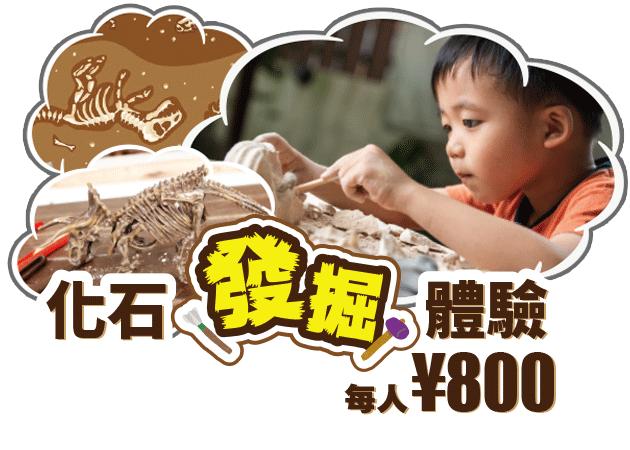 化石發掘體驗|STEM-RESORT 沖繩 豐崎