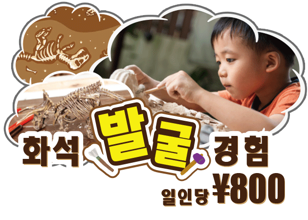 恐竜 発掘 体験プログラム|DINOSAUR BBQ & PARK 沖縄 ステムリゾート
